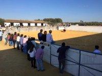 Plaza de toros y asistentes
