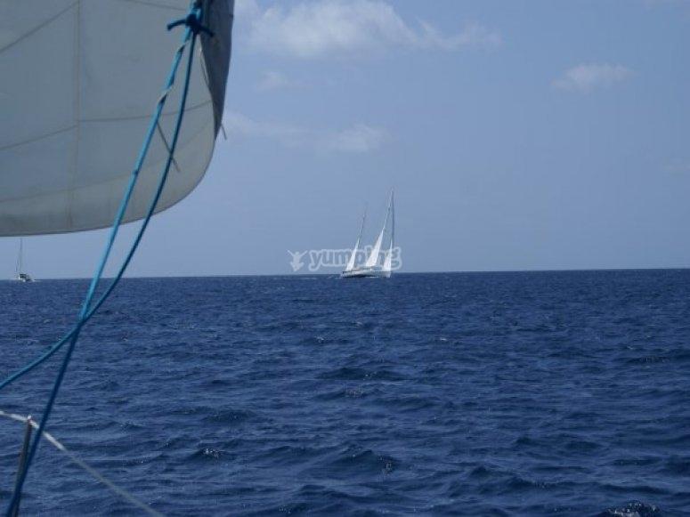 4天帆船赛