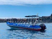 Barco semirrígido para excursión en barco