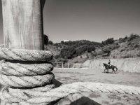 en el fondo un jinete montando a caballo