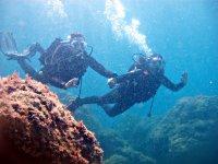 Inmersión en la Costa Brava
