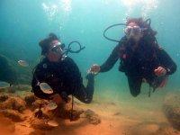 En el fondo marino entre peces