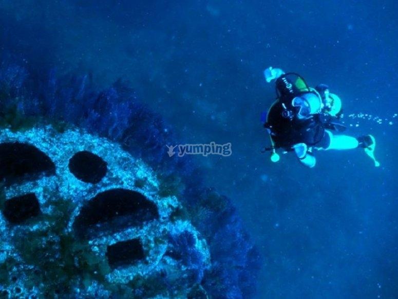 一次不错的潜水体验