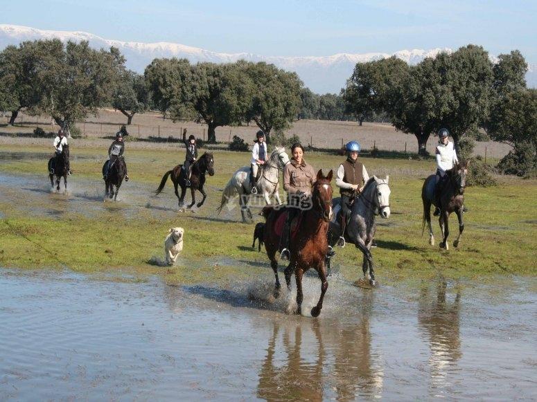 Ruta a caballo por el Parque de Monfragüe