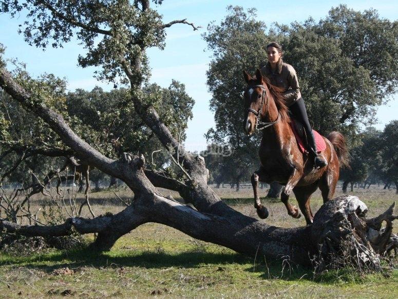 Ruta a caballo por Monfragüe 2011