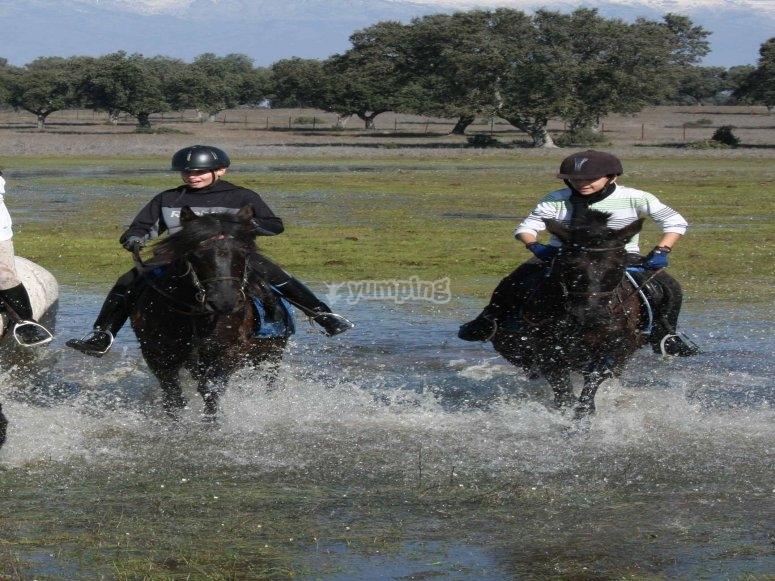Excursión a caballo por Monfragüe