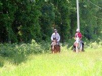 骑马小径在坎塔布里亚坎塔布里亚