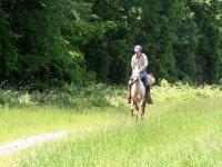 旅行骑在坎塔布里亚
