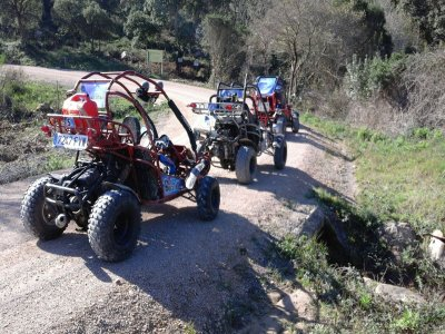Andalucía Activities Buggies
