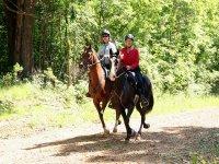 组彩骑马旅行