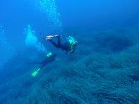 Tour notturno di immersioni in Fondi Lanzarote