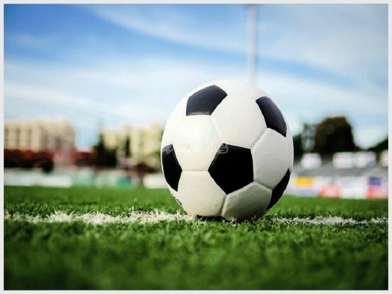 balon-futbol-campo-casas