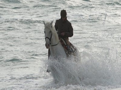 Horse riding on the beach of El Palmar