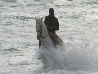 在El Palmar海滩的马骑术