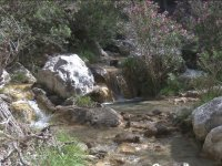 Curso del rio Chillar
