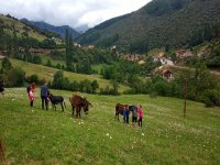 Ruta burril en Cantabria