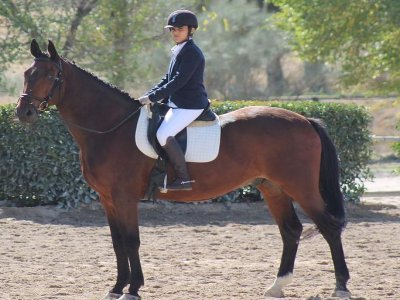 Horse riding camp in Madrid 1 week until 14h
