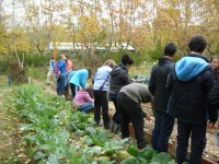 Alumnos de la granja escuela