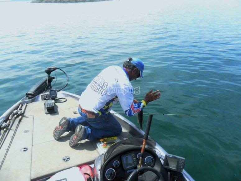 和我们一起钓鱼