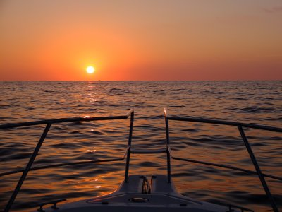 Disfrutadelmar Paseos en Barco
