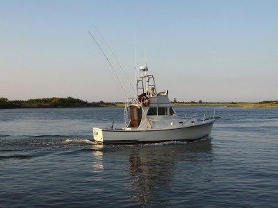 Disfrutadelmar Pesca
