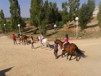 Rutas a caballoo