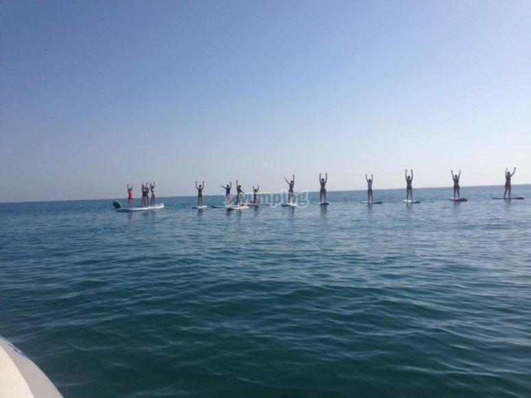 Hilera de paddle surf