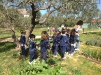 English urban camp, Espartinas, 6 weeks