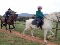 Nivel avanzado de equitación