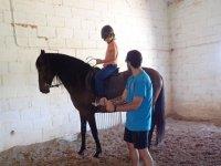 老师向学生解释马的故事