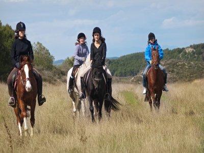 Pasear a caballo en Tafalla 2 horas