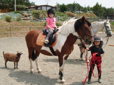 Pony trip for kids, Tafalla