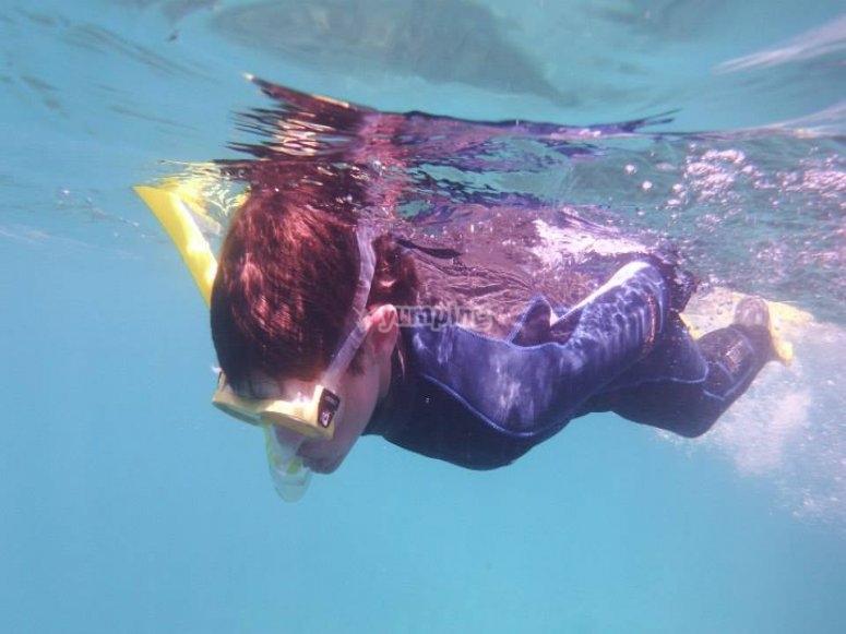 兰萨罗特浮潜
