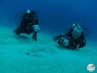 沉浸在兰萨罗特岛为潜水员认证