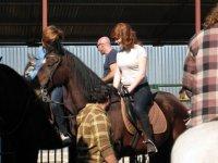 Nuestro caballos