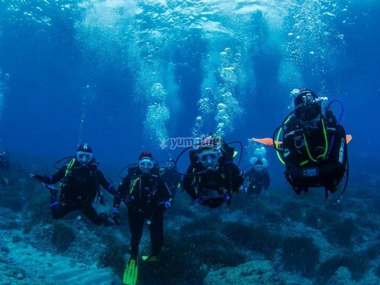 准备潜水员潜水享受潜水