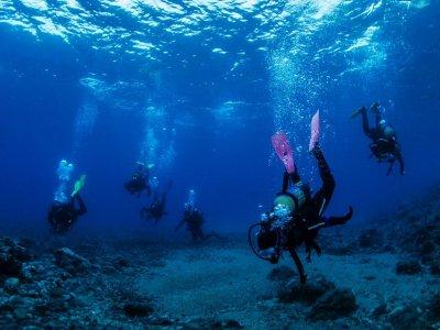 阿尔梅里亚的潜水长潜水课程为期2周