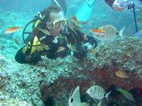 Inmersión entre banco de peces