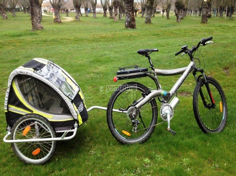 Bicicleta con carrito