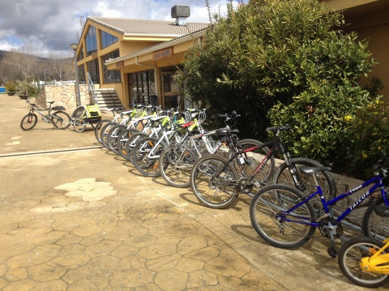 Conjunto de bicicletas