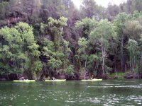 Canoeing  from Miravet to Benifallet. Adults fee