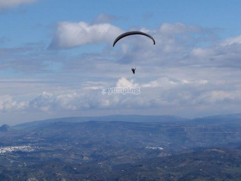 Volando sobre algodonales