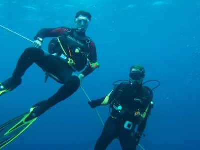 马德里和莱万特集团的基本开放水域潜水员