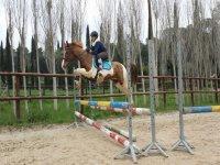 Salto del recinto a cavallo