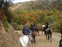 Rutas a caballo en Zaragoza