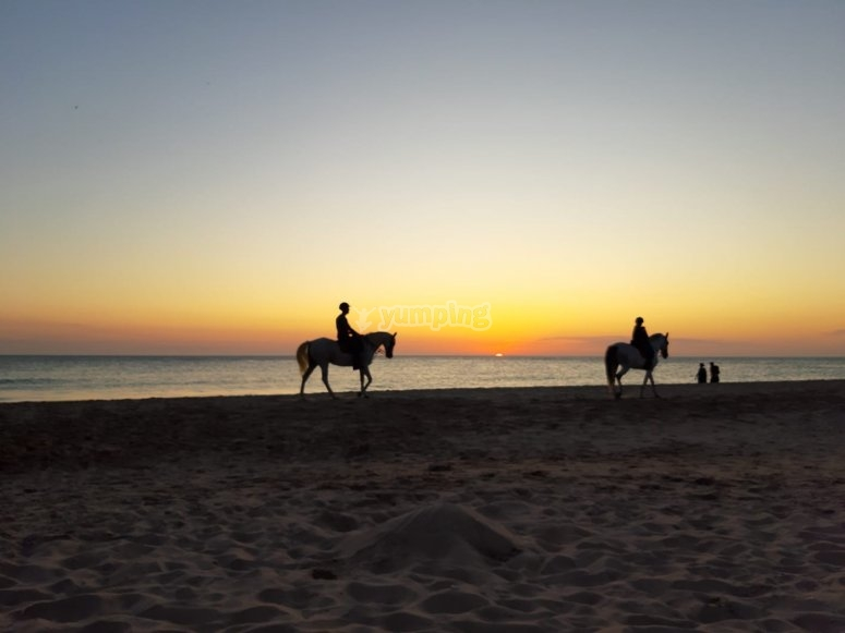 By horse in the beach of Roche