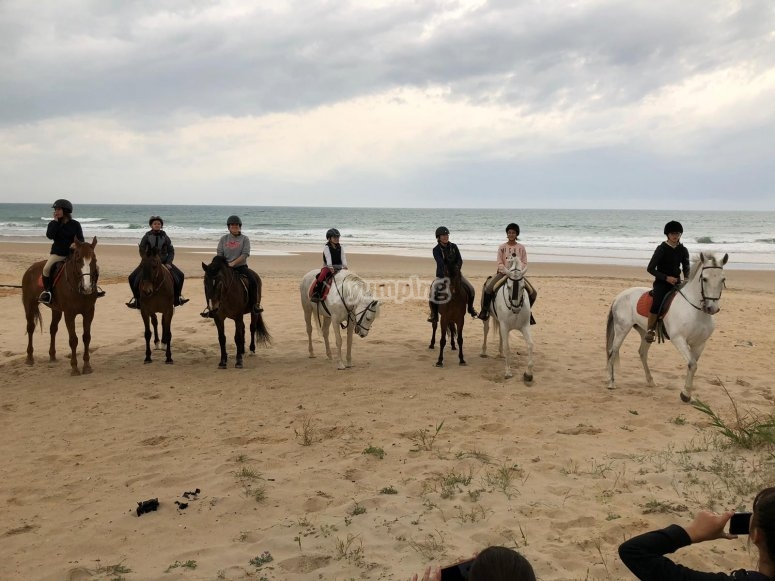 By horse through the Cadiz fields