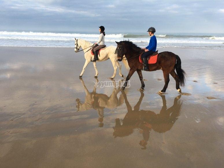Paseo a caballo por la playa