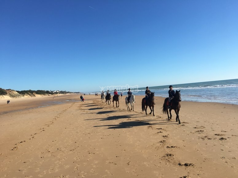 Route by horse in Conil