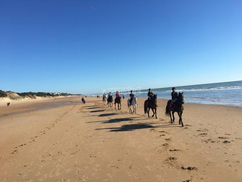 骑马海滩来自Conil